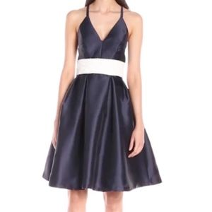 Carmen Marc Valvo Infusion Empire Waist Dress 10